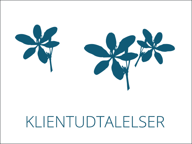 Susanne Glending Psykoterapeut/traumeterapeut & kranio-sakralterapeut
